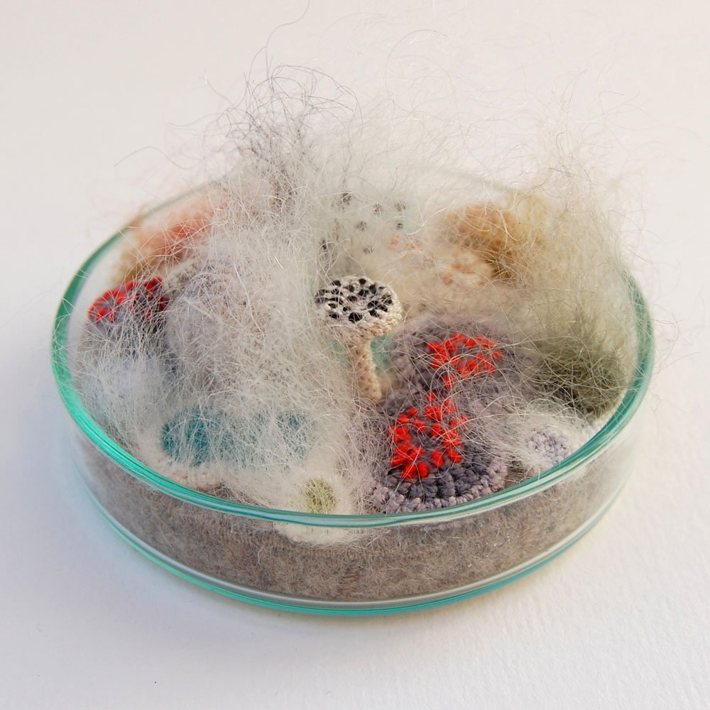 Crocheted and Embroidered Bacteria Grow in Elin Thomass