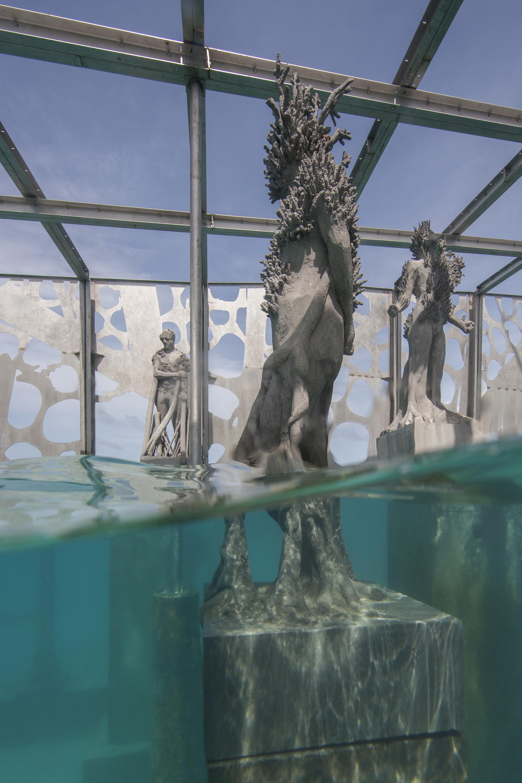The Coralarium An Immersive Sculptural Installation Semi