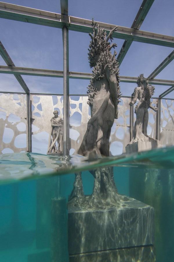 Coralarium Immersive Sculptural Installation Semi