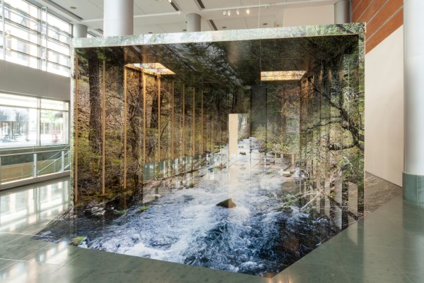 Three-dimensional Installation Chris Engman
