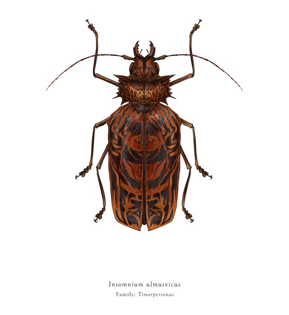 Insect Illustrations Inspired by Looney Tunes Characters and