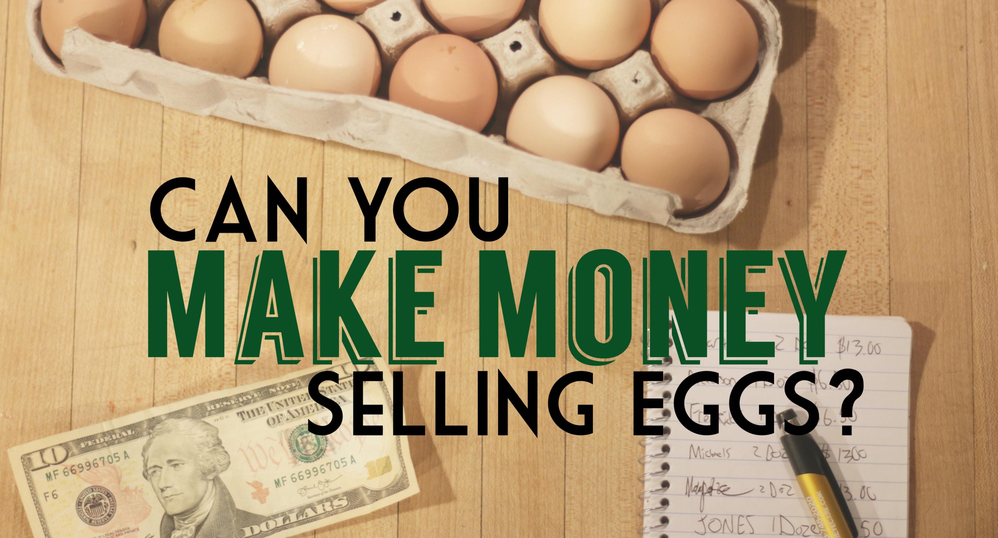 Can You Make Money Selling Farm Fresh Eggs Chickens Eggs