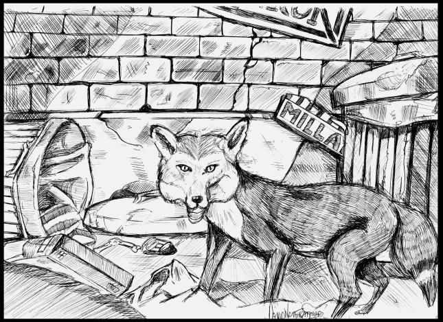 Fox by David Naughton-Shires