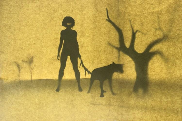 Dog Shins - Holly Francis