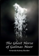 The Ghost Horse of Galinas Moor