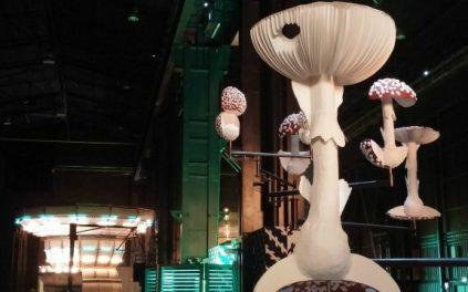 Cosa fare a Milano: Doubt di Carsten Holler all'Hangar Bicocca