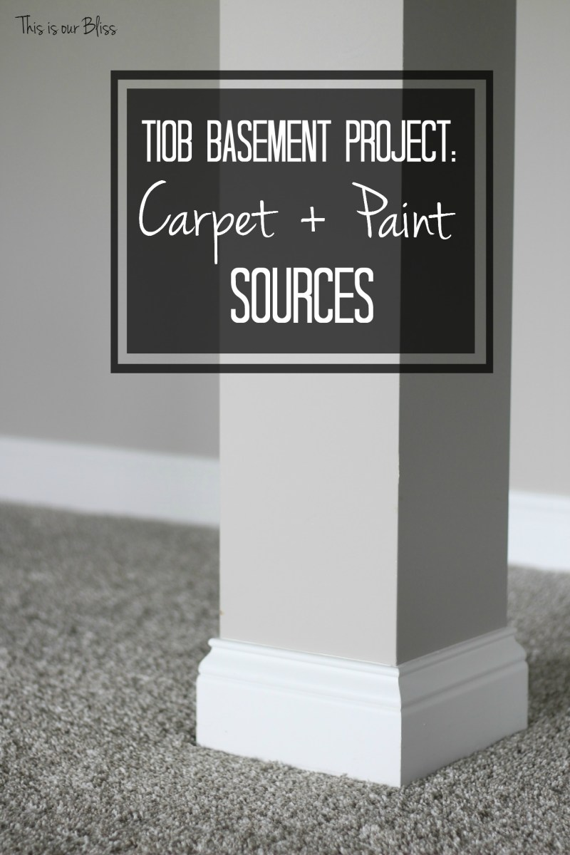 Basement Carpet + Paint sources | TIOB Basement Project Update V