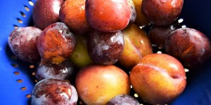 Season's bounty: How to make spicy plum chutney, from PYO to plate