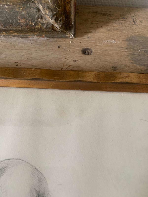 ancienne étude dessin au crayons de nus