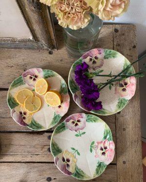 ancienne assiette en barbotine décor de fleurs pensées 19ème