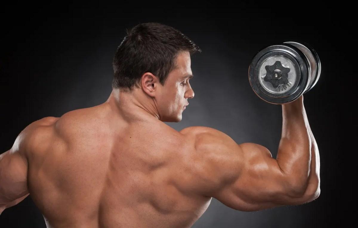 huge shoulder and bicep muscles