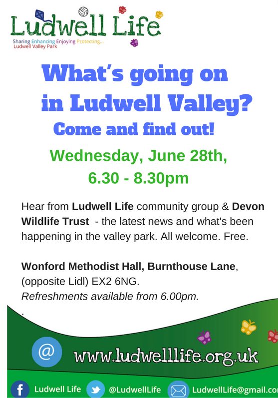 Ludwell Valley Meeting 28th June