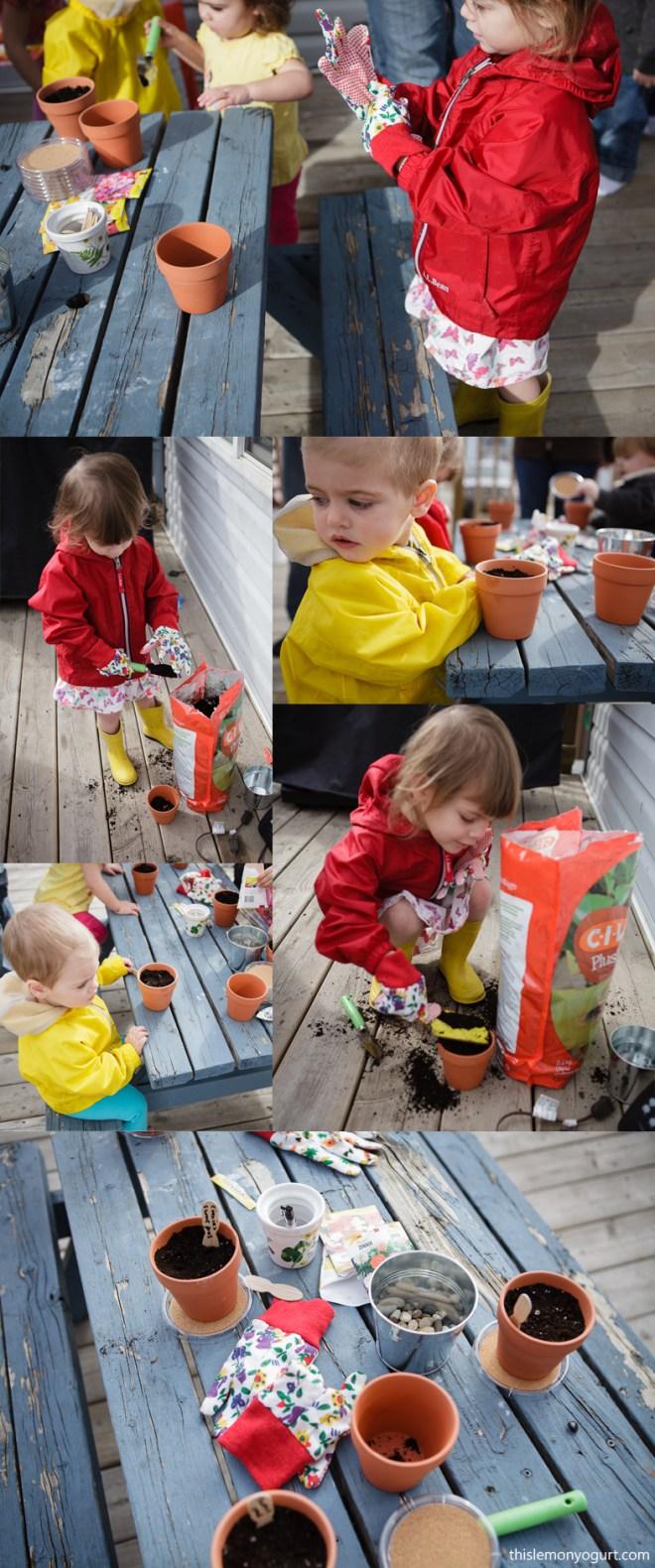 Baby Book Club- Miss Rumphius {this lemon yogurt}