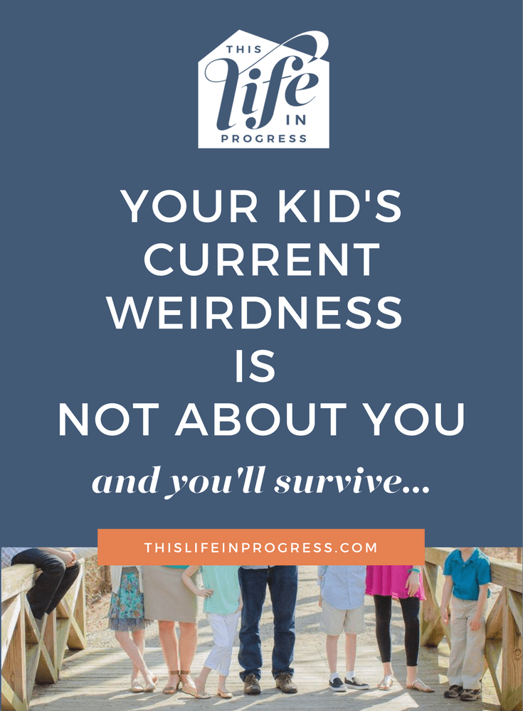 Parenting Truth | Humor | Mom Blogger | Blended Family | Divorce | Coparenting | Parenting Teens | Parenting Toddlers | It's Not About You | Kids Will Be Kids