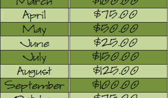 Monthly Savings Challenge!
