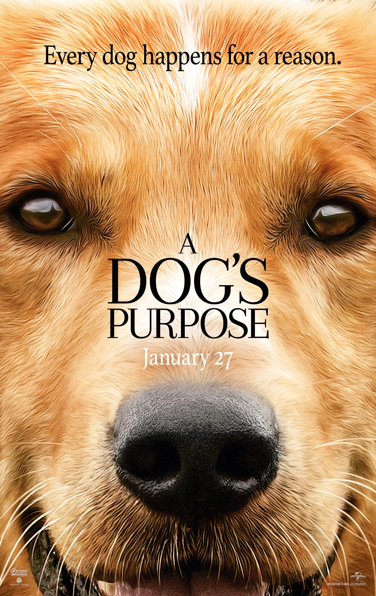 A Dog's Purpose Trailer + Movie Details #ADogsPurpose