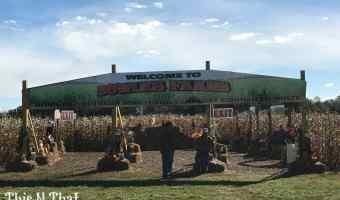 Corn Maze Family Fun Day at Bowles Farm! #PeanutsBrandAmbassador
