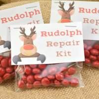 Rudolph Repair Kit