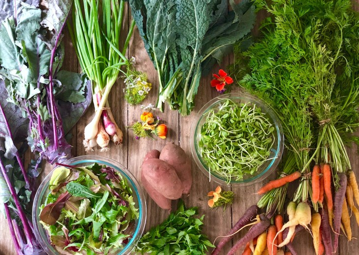 produce from a local CSA
