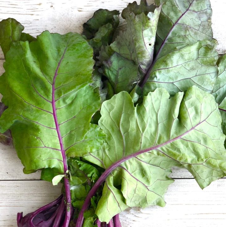 picture of leafy kohlrabi greens