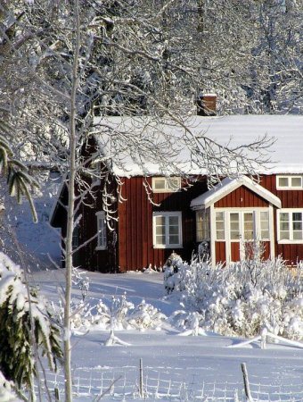 How To Keep Your House Warm And Costs Low This Winter