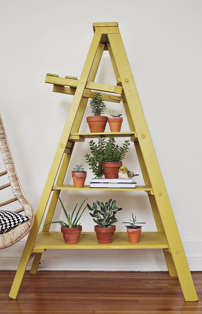 DIY tiered ladder plant stand