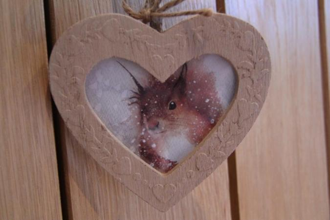 Room 1 - Red Squirrel