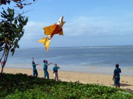 Kite Flyers in Sanur, 2012