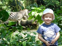 Loves his animals. From the Wood's trip to Singapore in 2014
