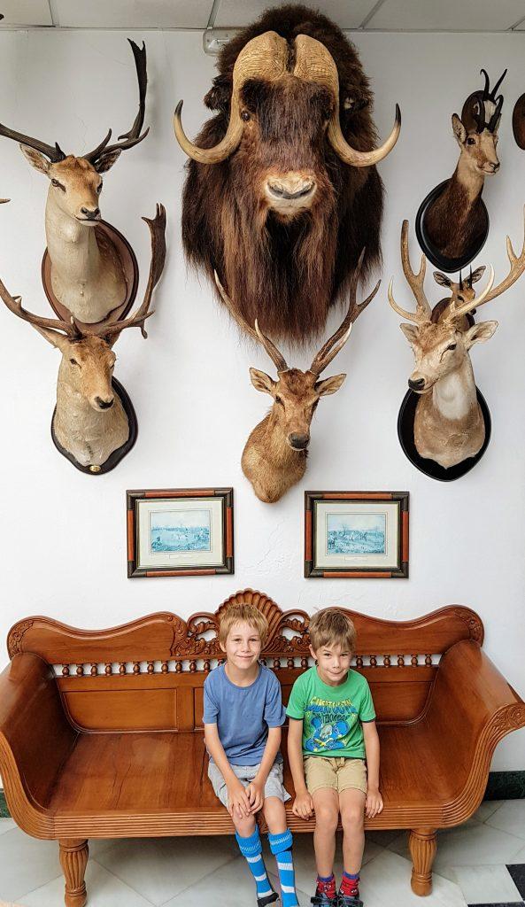 Ronda hunting museum