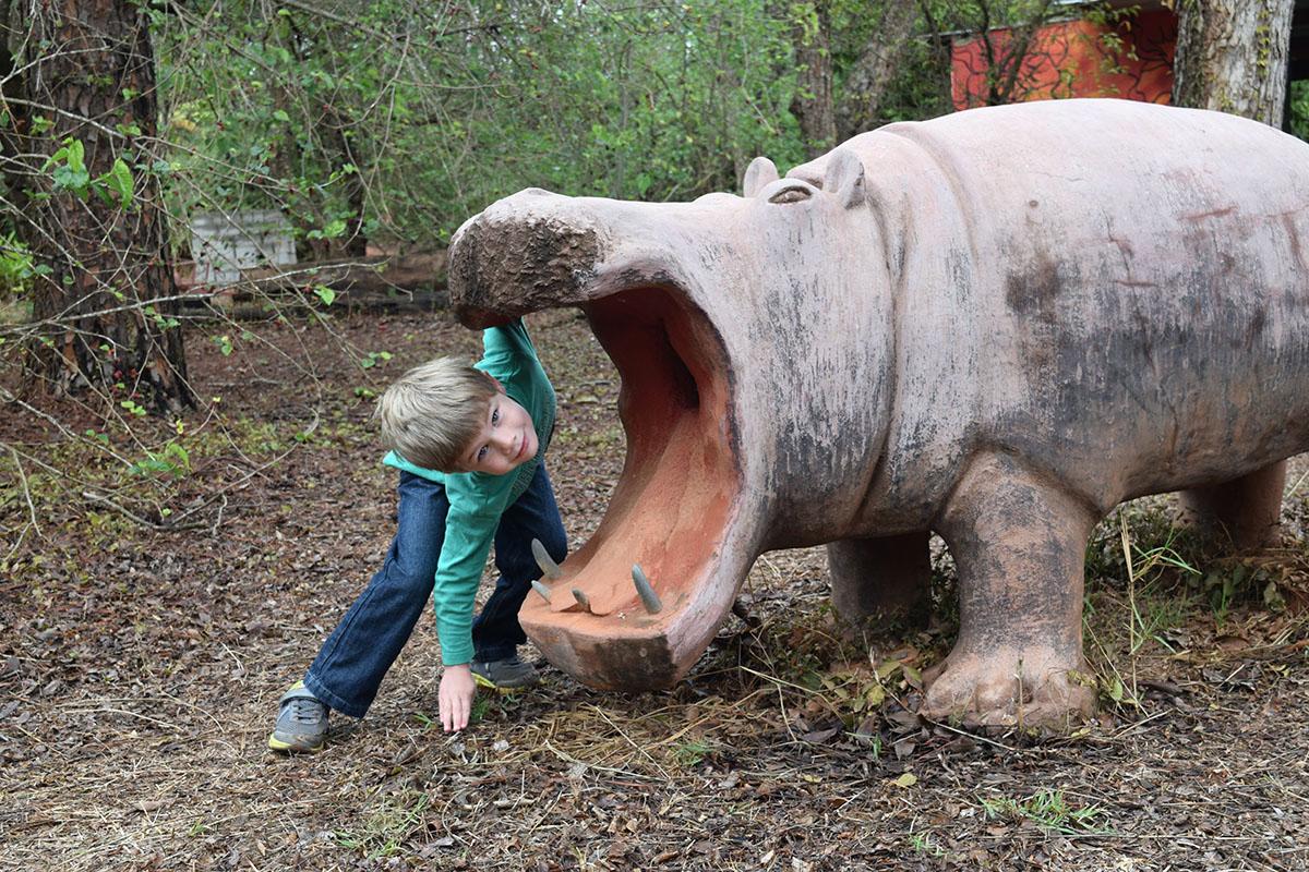 Hippo Play