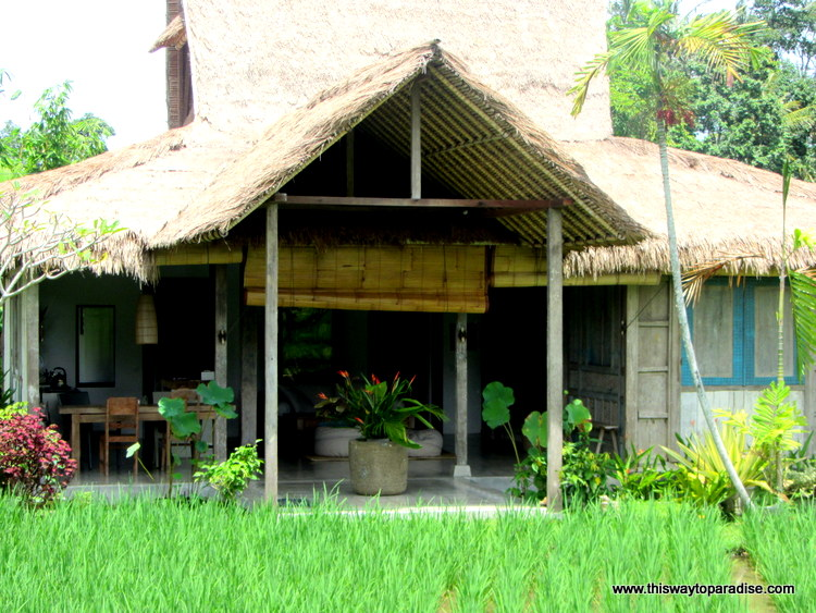Places To Stay In Ubud