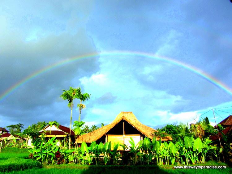 Rainbow in ubud
