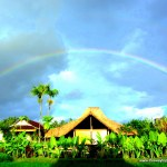 Rainbow in ubud