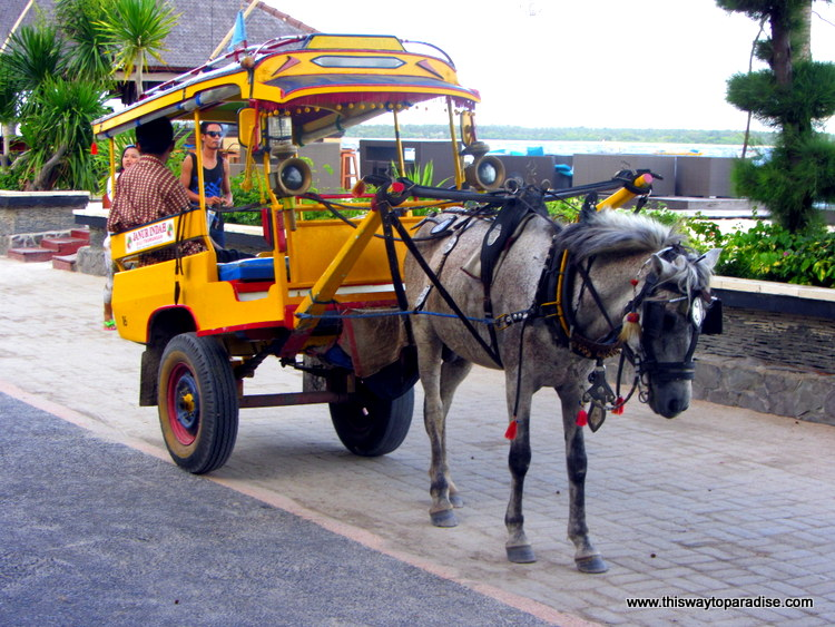 Horse Cart on Gili Trawangan