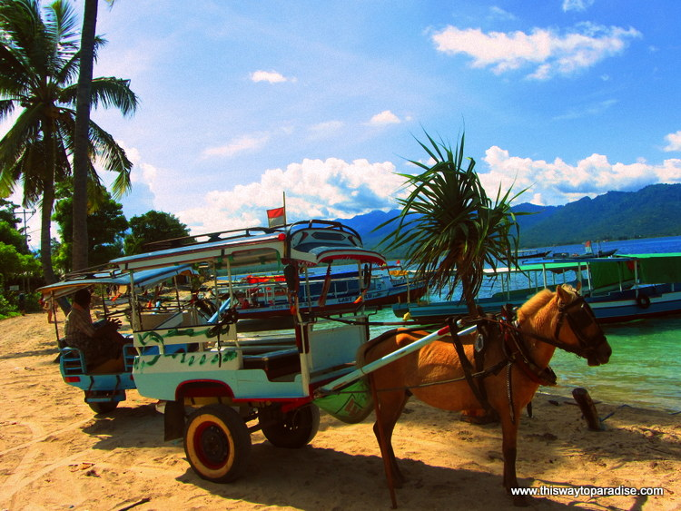 Transportation on Gili Air, Gili Islands, Horse and Cart
