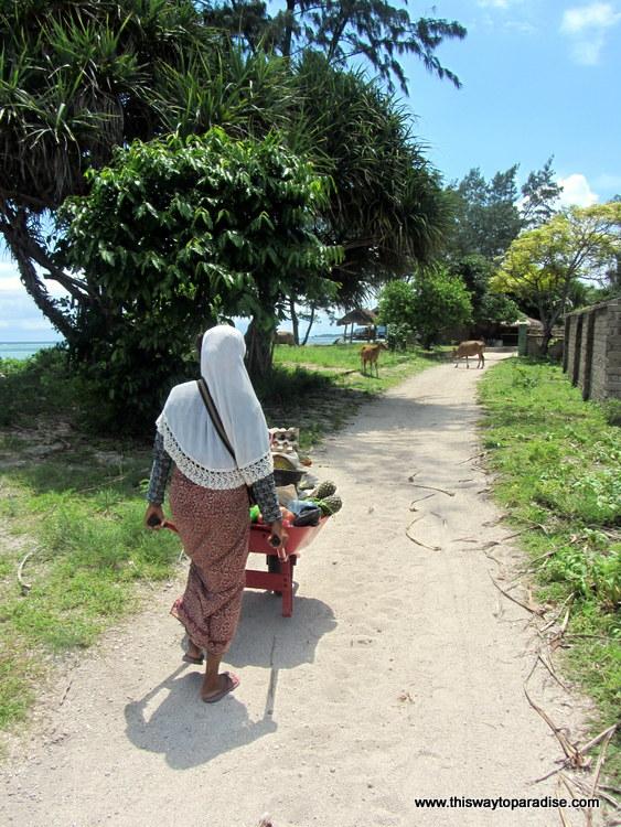 Woman pushing a wheelbarrow on Gili Air