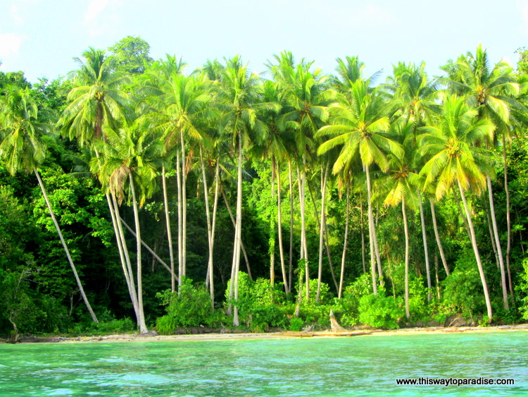 View of Raja Ampat from boat, best diving