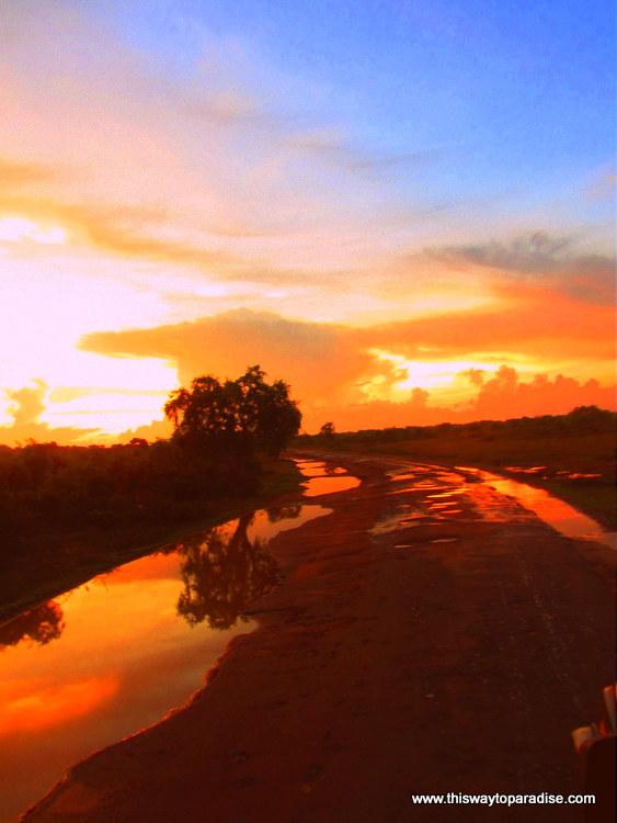 Sunrise in Yala National Park, Sri Lanka