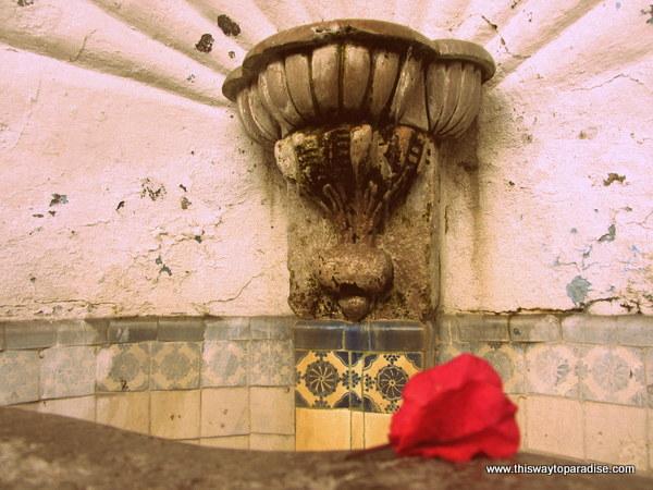 Fountain of reflection, San Miguel de Allende