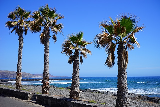 The Most Exotic Tenerife Beaches