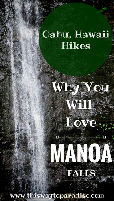 u Hikes: Why You Will Love Manoa Falls In Hawaii