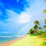 Why I'm Giving Up My Dream Life At The Beach To Go Volunteer In Costa Rica