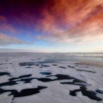 10 Things You Didn't Know About the Arctic