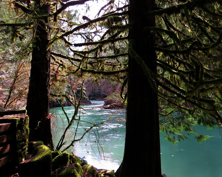 Washington Hikes: The Stunning Moulton Falls Trail