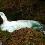Washington Hikes: Buck Creek Falls