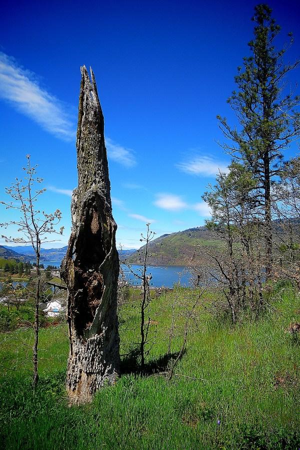 Oregon Waterfall Hikes: Mosier Creek Falls and Mosier Plateau