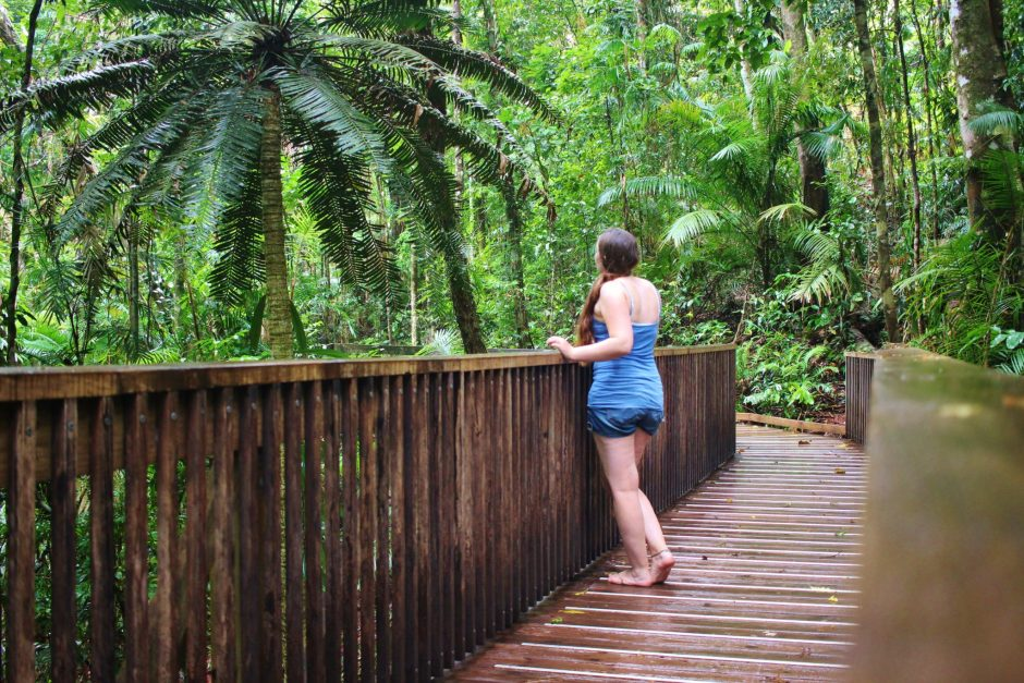 On the boardwalk in Daintree Rainforest, Australia