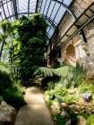 www.thomas-adorff.de | Paris - Jardin des Plantes