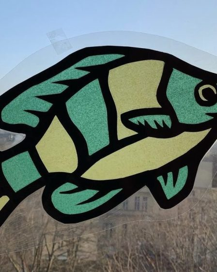 Fisch Fensterbild